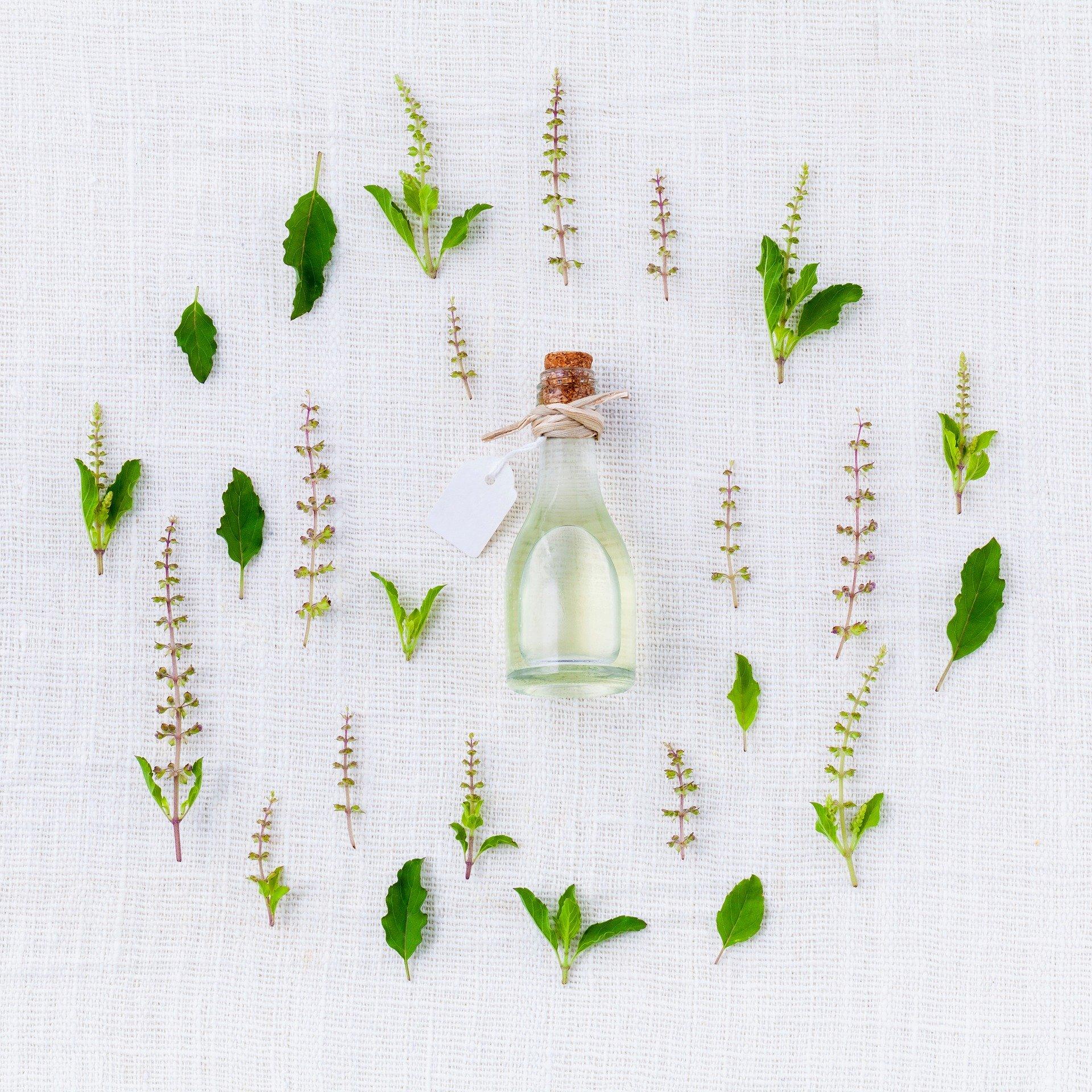 oil in skincare